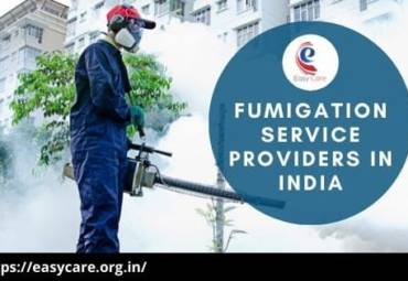 Easy Care Integrated Solutions India Pvt Ltd Provides Effective Fumigation Services